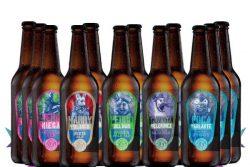 Cervecería Wendlandt pack de Top Beer MX
